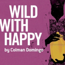 City Theatre to Continue 2016-17 Season with Colman Domingo's WILD WITH HAPPY
