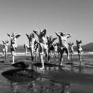 BWW Review: KOKORO Enlightens at Wreck Beach