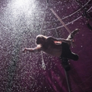 BWW Review: BIANCO, Southbank Centre, 29 November 2016