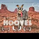 Claremont 5 Film Festival Winner A MILE IN THESE HOOVES Debuts Online