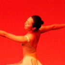 North Shore Civic Ballet to Launch Annual Online Holiday Auction November 20