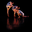 BWW Review: Ohio State Students Showcase Dance Skills in High-Energy DANCE DOWNTOWN Performance