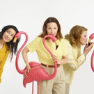 Photo Flash: Sneak Peek - Janeane Garofalo, Lili Taylor and Celia Weston Get Cozy with Flamingos for MARVIN'S ROOM on Broadway