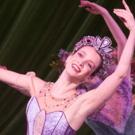 BWW Review: Nashville Ballet's Colorful and Resplendent NASHVILLE'S NUTCRACKER