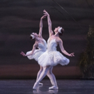 BWW Review: Heather Ogden is One Strong Swan in the National Ballet of Canada's SWAN LAKE