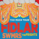 FIDLAR Collaborates with The Flaming Lips on New Music Video for 'Punks'