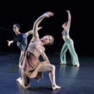 BWW Dance Top Stories You Might Have Missed 3/17 - Sarasota Ballet, The McCallum and More!