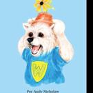 Andy Nicholaw Releases 'La Casa de Cumpleaños de Wilbur'