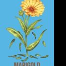 Jacob Amstel Releases MARIGOLD