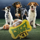 PUPPY BOWL XII Returns to Animal Planet Today