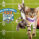 Hallmark Channel Teams with North Shore Animal League in Support of KITTEN BOWL III