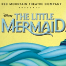 BWW Review: Escape to THE LITTLE MERMAID