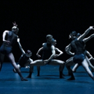 BWW Review: Sydney Dance Company Opens in New York City