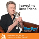 Oscar-Winner Christopher Walken Advocates Adopting Shelter Cats