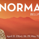Dallas Opera Presents Bellini's NORMA, 4/21-5/7