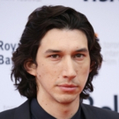 Theater Vet Adam Driver to Star in 'Wry' TV Comedy PATERSON