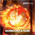 First Listen: Bamboora and Nurii Release 'Fiyah' Single
