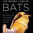 Bookworks Presents Shelf Awareness for Readers: An Appreciation of Bats