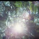 VIDEO: Silva Unveils Music Video for 'Feliz e Ponto'