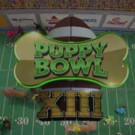 Bow WOW! Animal Planet's PUPPY BOWL XIII  Was Second Highest Rated Ever
