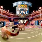 Hallmark Channel Announces Official Sponsors for KITTEN BOWL IV