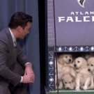 VIDEO: TONIGHT SHOW Presents 'Puppies Predict the Super Bowl LI'