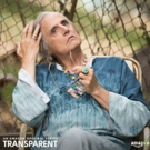TRANSPARENT & More Set for Toronto Film Festival's Small Screen Section
