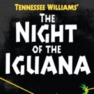 BWW Review: THE NIGHT OF THE IGUANA At Palm Beach Dramaworks
