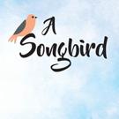 Renae Pickarsky Shares A SONGBIRD