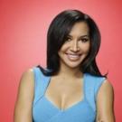 GLEE's Naya Rivera Welcomes First Child with Husband Ryan Dorsey