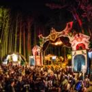 5th Annual Electric Forest Wraps Hugely Successful Year