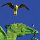 A Week To Go Until Those Liver Birds Take Flight Again In Special Concert Presentation!