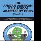 Joe L. Rempson Pens 'The African American Male School Adaptability Crisis (AMSAC)'