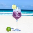 VINIQ Recipe for the Shimmery Summer Spritz by Natalie Migliarini