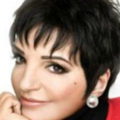 Star Gayzing Endorses Liza Minnelli For President: 'Kick Ball Change We Can Believe In'