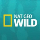 Nat Geo Wild Presents FREAKEND This Halloween