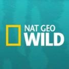 Nat Geo Wild Presents FREAKEND This Halloween