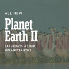 BBC America's PLANET EARTH II Becomes Highest-Rated U.S. Nature Show
