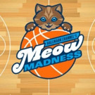John Salley to Co-Announce Hallmark Channel Special Event MEOW MADNESS