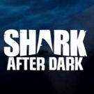 Eli Roth to Return as Host of Late-Night Talk Show SHARK AFTER DARK This June