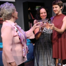 BWW Review: RAPTURE, BLISTER, BURN Posits Feminism Front and Center at Little Fish Theatre