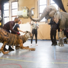 Photo Flash: Sneak Peek at RUNNING WILD in Rehearsal at Regent's Park Open Air Theatre