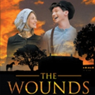 Mark Hopkins Releases 'The Wounds of War: A Sequel to 'Journey to Gettysburg'