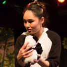 BWW Review: Fantastic Z's BAD PANDA Examines Alternative Families