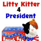 LITTY KITTER 4 PRESIDENT is Released