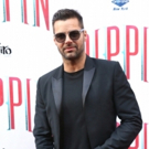 Ricky Martin to Star in New Reality Series on VH1