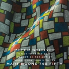 Mary Boone Gallery to Display New Peter Schuyff Exhibit, Today
