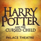 Live Owls Removed from Production of HARRY POTTER AND THE CURSED CHILD