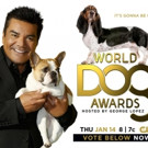 Attention Fans! Voting Now Open for THE WORLD DOG AWARDS on The CW