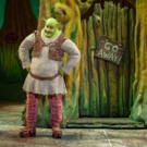 BWW Feature: SHREK THE MUSICAL Opens with GALA PERFORMANCE at MasterCard Theaters